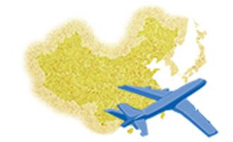 輸出手続き/輸出税関検査